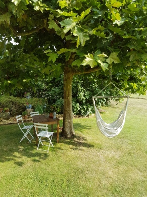Shady place and hammock