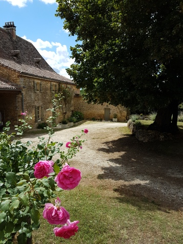 Roses at the front, La Maison Louverie