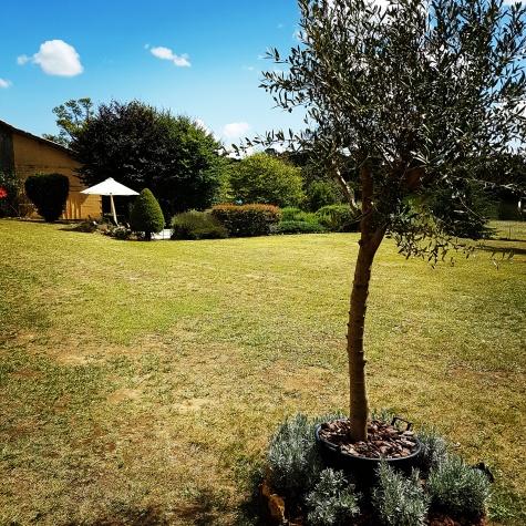 Garden & Swimmingpool, La Maison Louverie